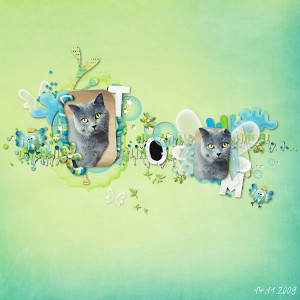 tom1411-kitty-littlewings-klein